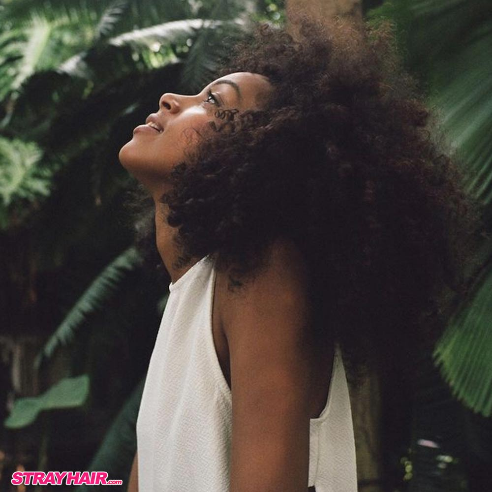 naturally curly hair trends