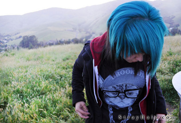 blue and brown hair