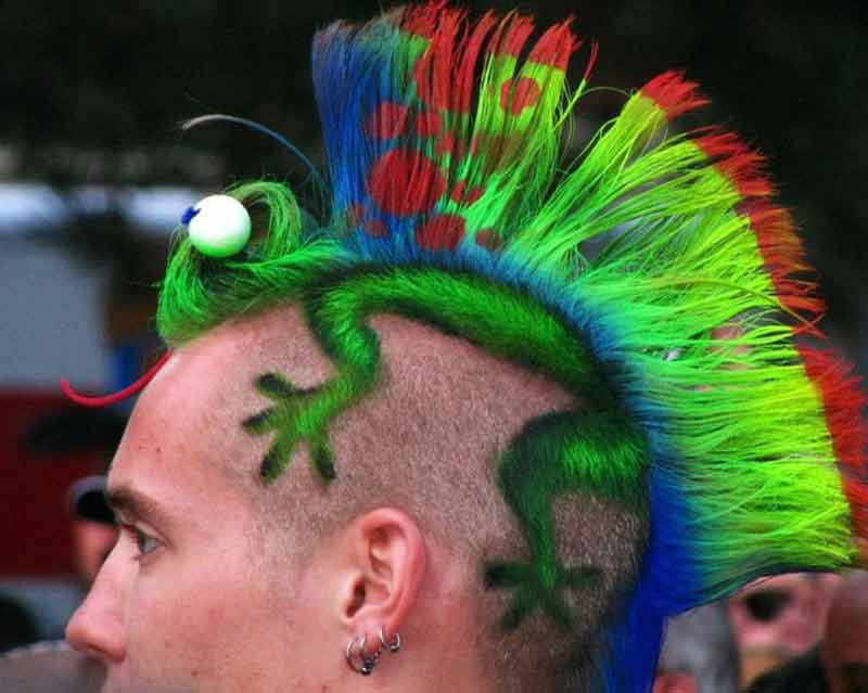 iguana be your hairstyle